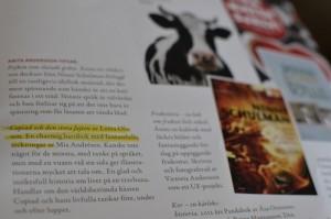 Mässgeneralen Anita Andersson tipsar kopia