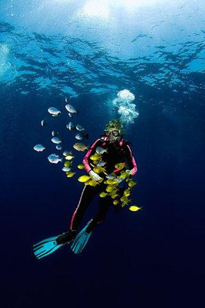 Lotta dyker i Mocambique